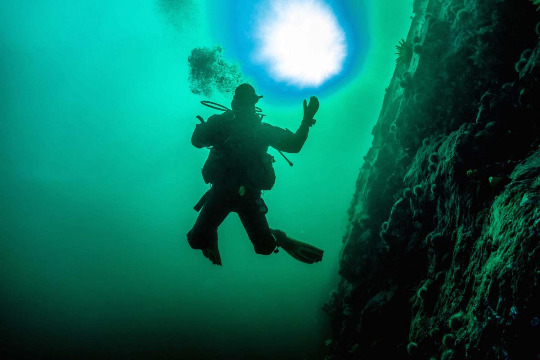 plongeur contre jour bleu fleuve Saint Laurent